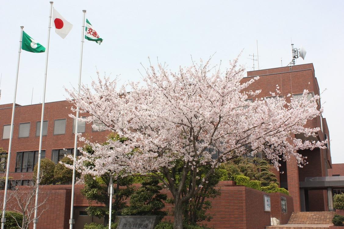 Árvore de cereja (árvore de aldeia)